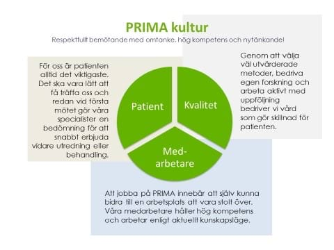 PRIMA kultur.jpg