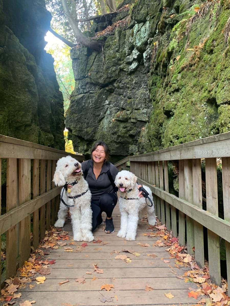 A hike with my pups, Miso and Maki, at Mono Cliffs Provincial Park