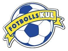 Fotbollskul_logga_lager_233x174.jpg