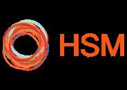 HSM Advisory logotype
