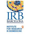 IRB Barcelona logotype