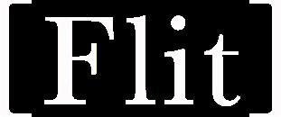 Flit logotype
