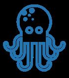 Octopus IT