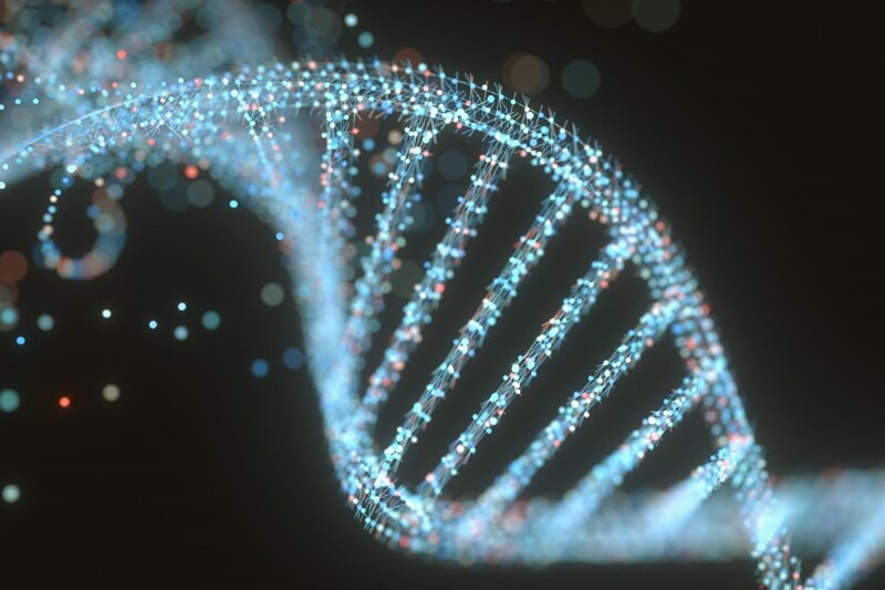 Preclinical Research Technician image