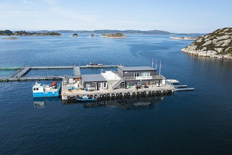 Engesund Fiskeoppdrett AS søker CFO - Økonomiansvarlig image