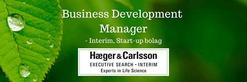 Interim – Business Development Manager, Start-up bolag image