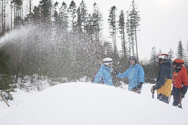 Snöfabriksmedarbetare image