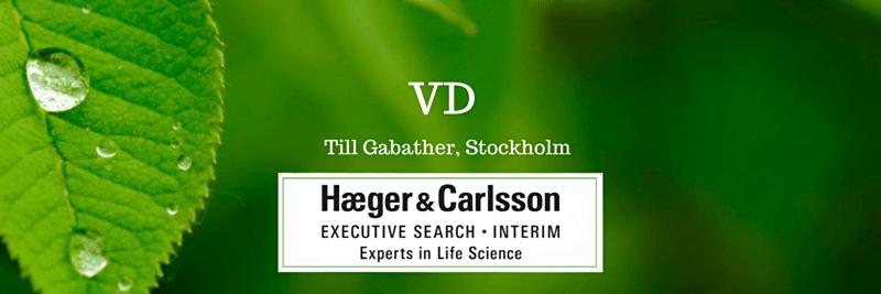 VD - Gabather image