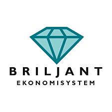 Säljande ekonom till Briljant ekonomisystem! image