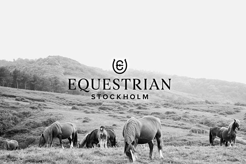 Engelsktalande kundsupportmedarbetare till Equestrian Stockholm! image
